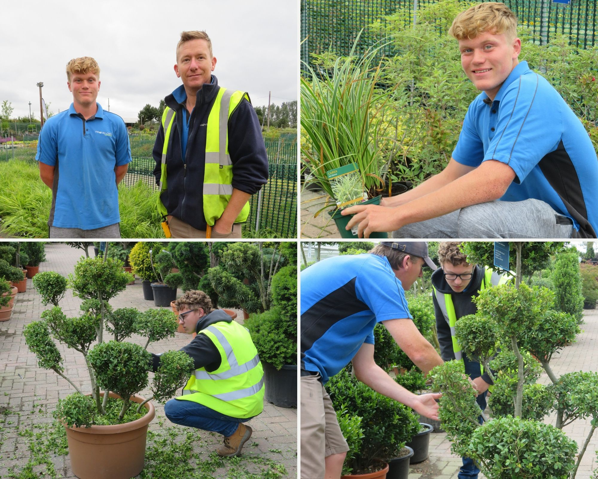 Hadlow College Student Progression at Provender Nurseries ...